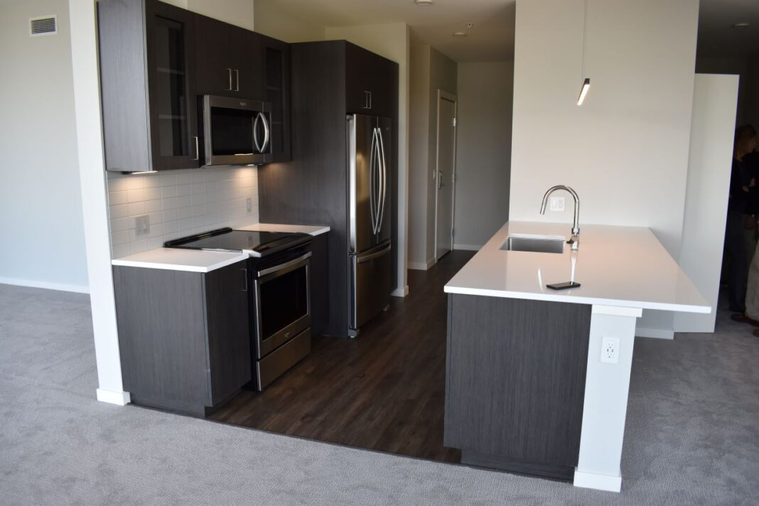 Kitchen in a single-bedroom unit