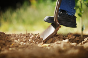 Shovel in ground_75037438_Shutterstock.jpg
