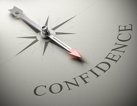 confidence_compass